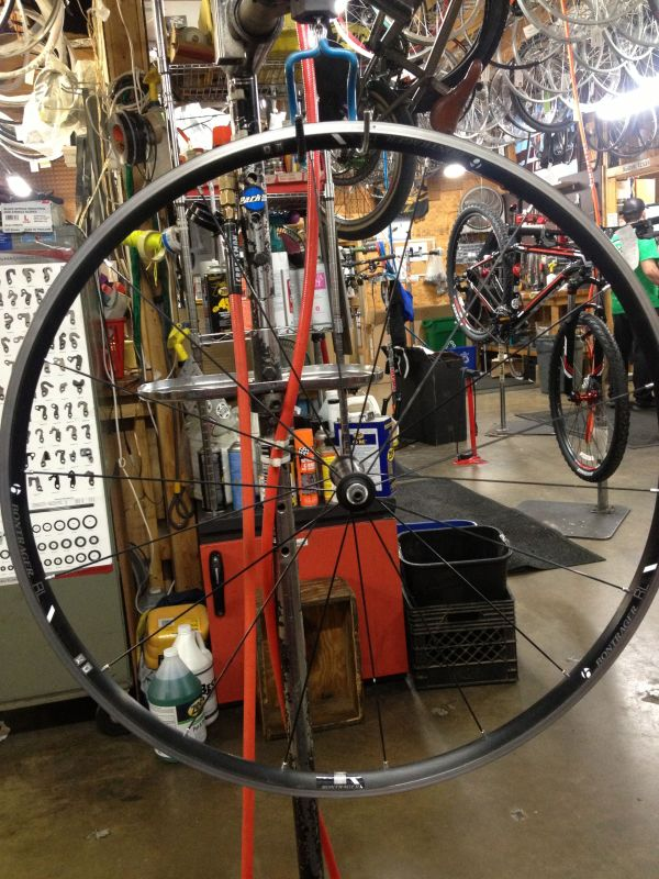 Bontrager's Race Lite TLR wheels are reliable everyday hoops.